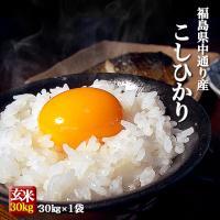 ふくしまプライド。体感キャンペーン 平成29年度産コシヒカリ 福島県 25kg(25Kg×1袋) 白...