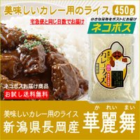 【ネコポス】ポストへ投函商品のため、代引き不可・お届け日ご指定も不可 カレーライスが大好きな日本人の...