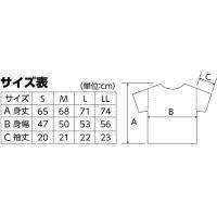 DXドライTシャツ S デイジー 165 半袖 メッシュ Tシャツ 大人サイズ 男女兼用 普段着 運動 ダンス アーテック 38498