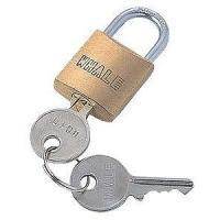 取付け部品、またはワイヤーに接続する南京錠です。