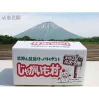 【農家直送】(農家直送)北海道羊蹄山麓産【とうや】 10kg