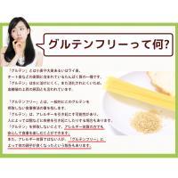 ミックス粉 送料無料  玄米ミックス  魚沼玄米パンミックス (グルテンフリー)(砂糖不使用)IH炊飯器で作る米粉パン 2袋セット(100g×4袋)|kopa-komeko|04
