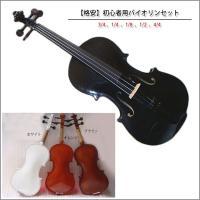 格安 初心者用バイオリンセット