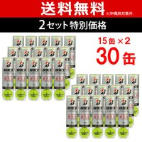 BRIDGESTONE(ブリヂストン)NX1(エヌエックスワン)(4球入)2箱セット(15缶×2=1...