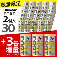 「増量キャンペーン」DUNLOP(ダンロップ)FORT(フォート)[2個入]1箱(30缶+3缶=33...