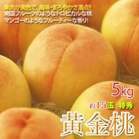 旬:7月下旬頃〜約3週間  『黄金桃』は白桃や黄桃に比べ、育成に手間が掛かるせいもあって生産量が非常...