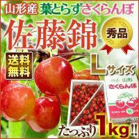 葉とらずさくらんぼとは… さくらんぼの葉を取らないで栽培した自然体のさくらんぼのことです。 たくさん...