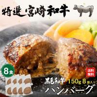 ハンバーグ 黒毛和牛100% 150g×8食セット 宮崎県産 送料無料 真空パック 小分け 贈答品 クール
