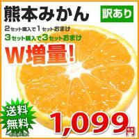 ・熊本県産 ・本商品は訳あり商品です ・サイズ混合不選別(大小偏る場合もございます。) ・2セット購...