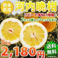 本場熊本の河内晩柑(かわちばんかん)を送料無料でお届け。 ・2セット購入で6kg増量!!合計18kg...