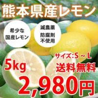 レモン生産量第4位の熊本県・三角地区で作られた希少な国産レモンです。 外国産にはない、爽やかで強い香...