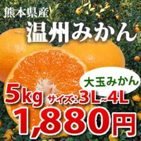 ・サイズ3L ~ 4L(大玉のみかんです。) ・2セット購入で1セット分おまけ[合計15kg] ・複...