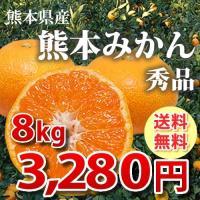 みかん 送料無料 秀品 8kg 絶品の熊本みかん ギフト 贈り物 熊本県産  2箱購入でおまけ付き