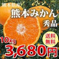みかん 送料無料 10kg 秀品 絶品の熊本みかん ギフト 贈り物 熊本県産