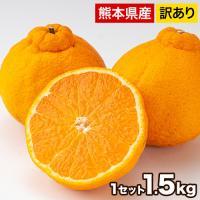 デコみかん 1.5kg 訳あり 送料無料 デコ みかん デコポン 同品種 熊本県産 旬 の みかん 柑橘 産地直送 取り寄せ 箱 3月中旬-3月末頃より順次出荷予定