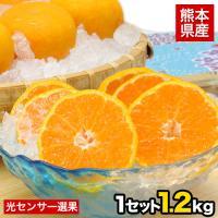 ■名称 みかん  ■産地 熊本県  ■内容量 ハウスみかん約1.2kg(S-2Sサイズ/約15玉前後...