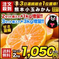 熊本小玉 みかん 訳あり 2kg 送料無料 2セット購入で+1kg増量 3S-Sサイズ混合 グルメ 1箱おまとめ 11月上旬-11月中旬頃より出荷|kumamotofood