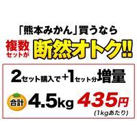 熊本 みかん 訳あり 1.5kg 送料無料 2セットで1セット分、3セットなら3セット分おまけ増量 グルメ ポイント消化 10月中旬-11月上頃より順次出荷 kumamotofood 04