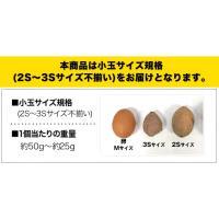 長期熟成 小玉限定 本場種子島産 訳あり 安納芋 1.2kg 小玉 2S〜3Sサイズ限定 送料無料 さつまいも  3-7営業日以内に出荷予定(土日祝日除く)|kumamotofood|03