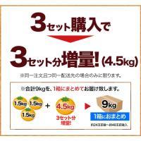 訳あり大粒 みかん 1.5kg 送料無料 2セットで1セット分、3セットで3セット分増量 青島系 みかん 複数セットは1箱におまとめ 2月上旬-2月末頃より順次出荷|kumamotofood|11