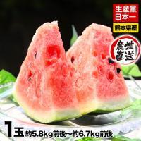 ■名称 すいか  ■産地 熊本県  ■内容量 【訳あり】お徳用すいか約5.8kg前後〜6.7kg前後...