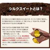 送料無料 熊本県産シルクスイート1kg さつまいも (サイズ不揃い) 2セットで1セット分増量 ※複数はおまとめ配送 5月末-6月中旬頃より出荷|kumamotofood|09