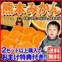 スーパーW増量 熊本県産【訳あ...