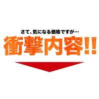 送料無料 甘夏みかん1.5kg 甘夏の名産地熊本県産 自家用訳あり 3セット購入で3セット増量 複数セットの場合1箱にまとめて配送 6月上旬-6月下旬頃より出荷|kumamotofood|04