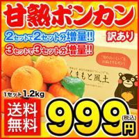 ■熊本県産 訳ありポンカン 1セット1.2kg  ■サイズ不選別のため、サイズにバラツキがある場合が...