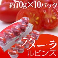 【送料無料!】プチプチ新食感♪プロも惚れ込む!フルーツのように甘い高糖度トマト!ホテル、有名シェフ御...