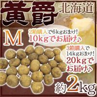 """【送料無料】北海道 北見産 じゃがいも """"黄爵"""" 約2kg 秀品 Mサイズ 2箱購入で10kgでお届け 3箱購入で20kgでお届け! 男爵芋"""