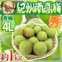 日本一のブランド梅産地・紀州和歌山の《南高梅》種が小さく肉厚で柔らかい!梅酒や梅ジュースなどに最適な...