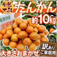 【送料無料】オリエンタルな香り広がる南国柑橘♪甘さ抜群でコク深い味わい!南の島育ち!海風と太陽をたっ...