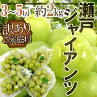 今人気沸騰中の【瀬戸ジャイアンツ】TVで放送された「桃太郎ぶどう」と同品種♪種なしで皮ごと食べられる...