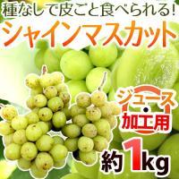 【送料無料】大注目の新品種「シャインマスカット」!皮ごと、まるごと食べられて種もない♪驚くほどの甘さ...
