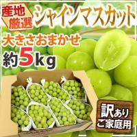 大注目の新品種「シャインマスカット」!皮ごと、まるごと食べられて種もない♪驚くほどの甘さとマスカット...