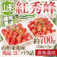 【送料無料】 より新鮮なサクランボを美味しく食べてもらいたいから、 「佐藤錦」発祥の地、山形県東根市...