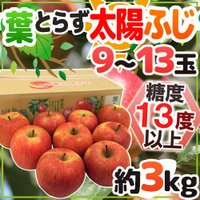 日本一のりんご産地弘前産!糖度13度以上!見た目よりも味を優先!葉っぱをとらずに栽培することで甘さ、...