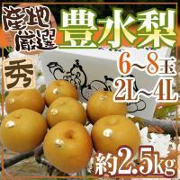 【送料無料】甘さ・酸味のバランスが絶妙!甘いだけでない、深い豊かな味わい♪むいていると果汁が滴るほど...