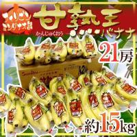 こだわりの高地栽培バナナ甘熟王!高地の寒さに耐えるため糖分の元であるでんぷん質を溜め込んだバナナは、...