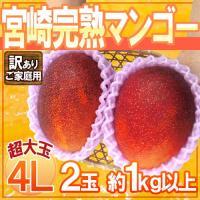 【送料無料!】とろける食感と濃厚な甘さ!あの有名ブランドマンゴー「宮崎完熟マンゴー」がおどろきの価格...