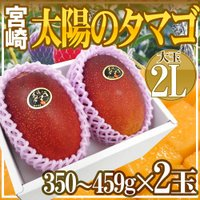 究極のマンゴー【太陽のタマゴ】宮崎県が誇る至高の逸品♪とろけるようななめらかな食感、うっとりする香り...