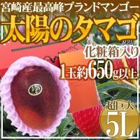 【送料無料!】最高峰マンゴー「太陽のタマゴ」の中でも超特大!迫力の650g以上!!!片手で持ちきれな...