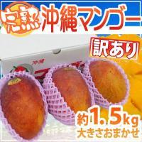 太陽をさんさんと浴びたトロピカル感♪トロ〜り濃厚天然スイーツ!宮崎県に負けない沖縄品質のマンゴーがと...