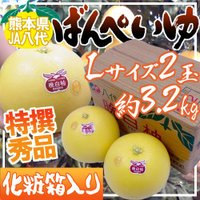 【送料無料】ドでかい!世界最大級の柑橘「晩白柚」爽やかな柑橘の香が広がり、果肉は上品な甘さでプリプリ...