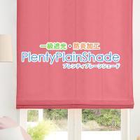 プレーンシェードカーテン 防炎 遮光 36色 オーダー プレンティシェード 日本製