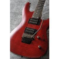 ●DEAN Custom / Custom 350 Floyd - Trans Red Item I...