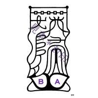 【結婚へと二人を導く 刀印護符】鎮宅七十二霊符と双璧をなす最高位の符「天帝尊星八十六霊符」の一枚です...