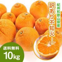 和歌山県産のしらぬい(不知火)です。  デコポンと同品種ですが、こちらは和歌山県産になります。  サ...