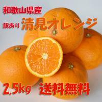 【複数セットご注文の場合、大きい箱にまとめて梱包します。】  和歌山県産の清見オレンジです。  サイ...